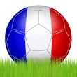 Ballon de football tricolore dans l'herbe