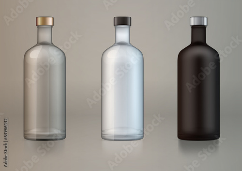 vector blank alcohol bottles for new design