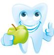 gesunder lachender Zahn zeigt grünen Apfel