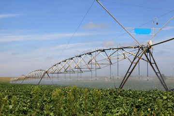 Industrial irrigation of soy beans.