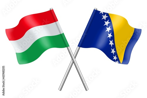 Flags : Hungary and Bosnia-Herzegovina