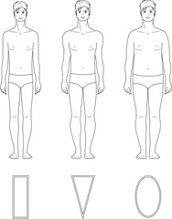 Vector illustration of male figure. Body types