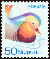 Mandarin Duck (Japan 2007)