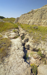 Eroded Gully in the Badlands