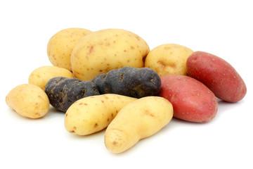 Pommes de terre variées
