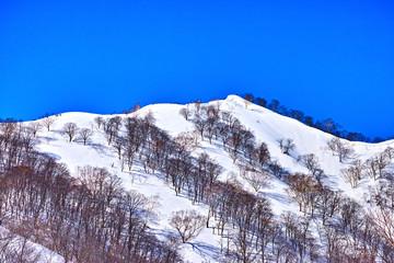 冬の小遠見山へ登る