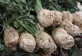 root celeries