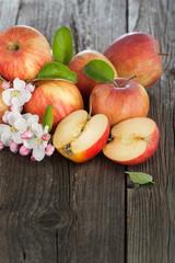 Frische Apfelernte