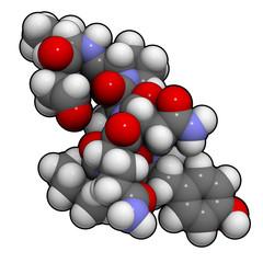 Oxytocin (cuddle hormone) molecule.
