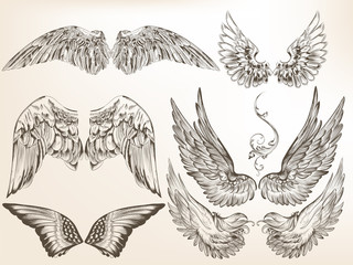 Collection of vector hand drawn wings for design