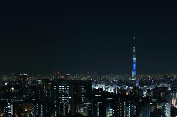 東京の夜景とスカイツリー
