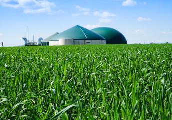 Biogasanlage umgeben von jungem Getriedebestand