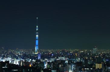 東京の夜景 ライトアップされたスカイツリー
