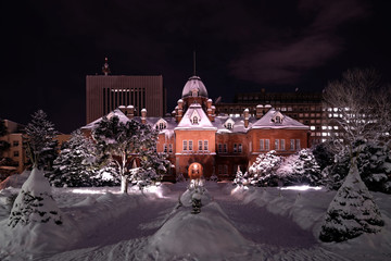 Hokkaido Government Building during winter with snow covered