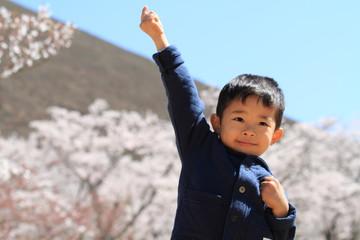 幼児(4歳児)と桜