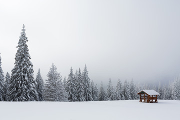 Refuge in mountain with forest on winter