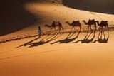 Desert Sahara, Camel Ride Caravan, Enjoying and happy People - 63986683