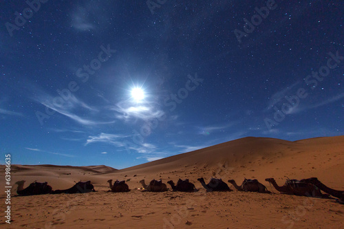 Camp in Sahara Desert in night with moon as star and moving star