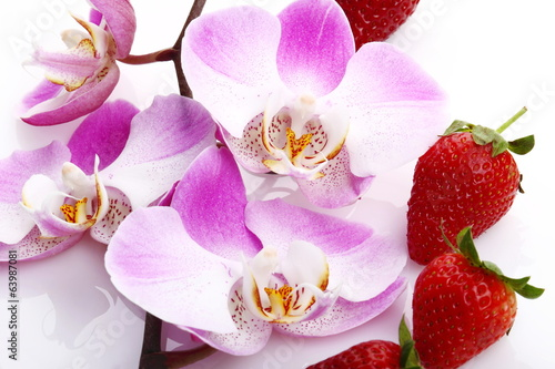 Orchidea e fragole
