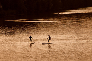 Silhouette of men paddleboarding at sunset, Florence river, Ital