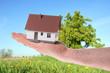 Hand hält ein kleines Haus in der Natur
