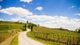 collina in toscana, umbria - 63989604