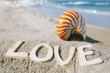 nautilus shell with love message on Florida beach  under the sun
