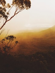Blue Mountains Australia in golden misty haze