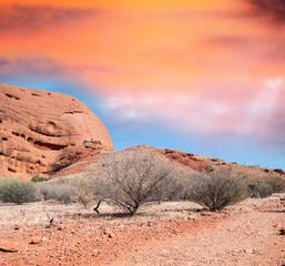 Desert and rocks of Australia