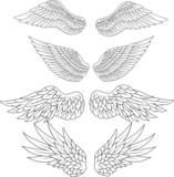 Wings tattoo - 64012247