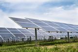 Solar cell panels farm
