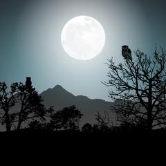 Mondschein © Matthias Buehner