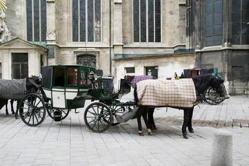 Fiaker Kutsche in Wien