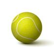 Realistic Tennis Ball Icon