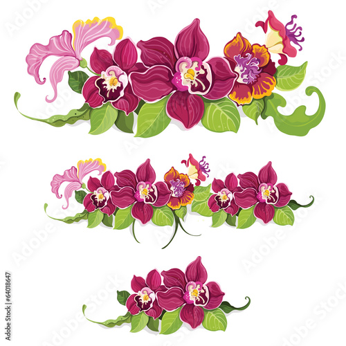 Tropical flower elements pattern