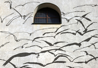 Shadows on the wall with a window, Birds