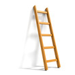 Ladder isolated on white - 64022874