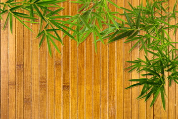 bambou sur tatami asiatique