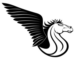 Pegasus sign.