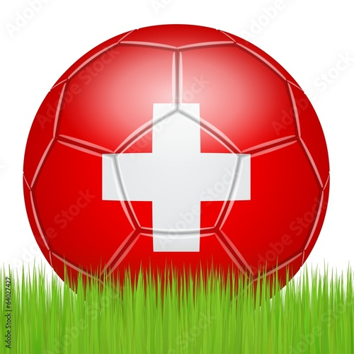 Swiss soccer ball on the lawn