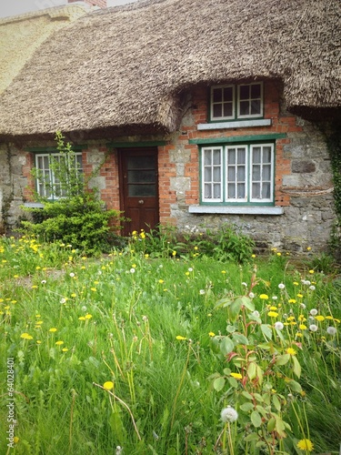 cottage with wild garden