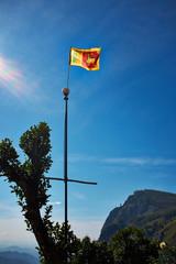 Flag in Landscape with green fields of tea in Sri Lanka