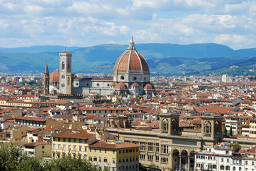 Florence, city of art, history and culture - Tuscany - Italy 109