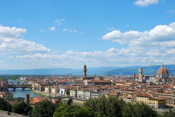 Florence, city of art, history and culture - Tuscany - Italy 098