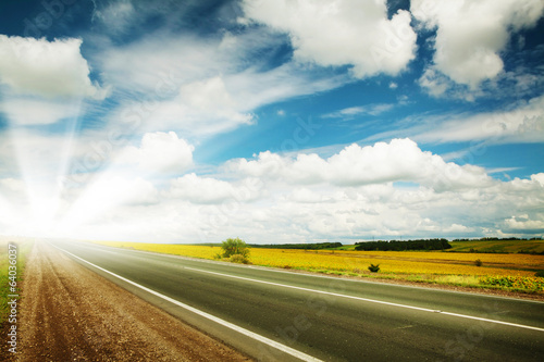 Road through the yellow sunflower field - 64036037