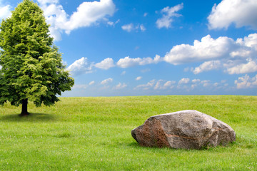 Big stone and tree on a green grass hill