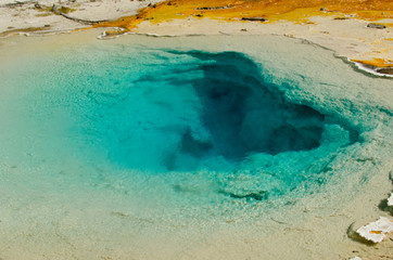 Morning Glory Hot Spring of Grand Prismatic Spring Yellowstone
