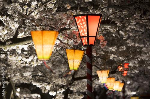 桜祭りの提灯