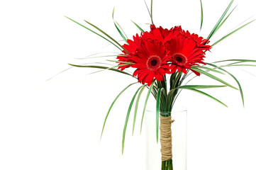 Bouquet of red gerberas, left you can write some text