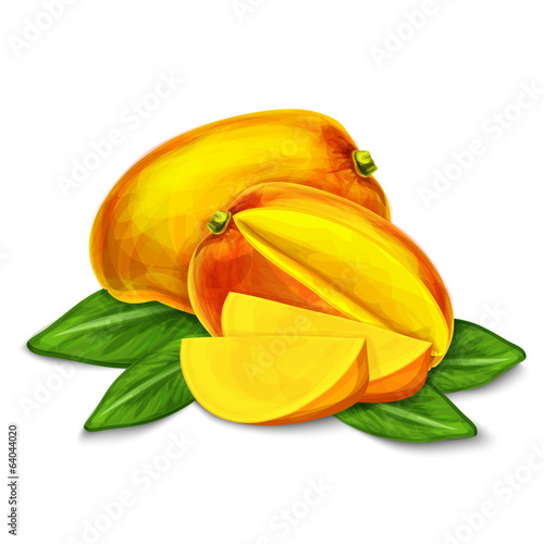 Mango isolated poster or emblem